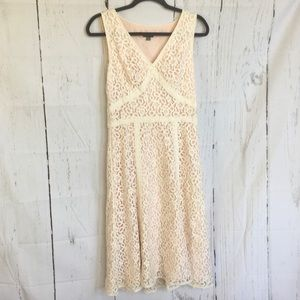 Ann Taylor Floral Lace Overlay Dress